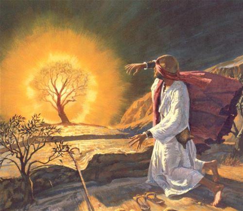موسى هارب من شعبه هارب من الله